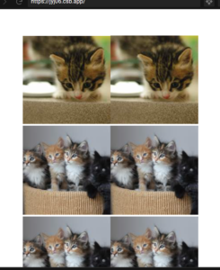 Vue.js Lazy Loading Images From API in Grid View Using vue-lazyload Library Example in Javascript Full Project For Beginners