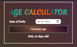 React.js Age Calculator From Date of Birth in Browser Using TypeScript Full Project For Beginners