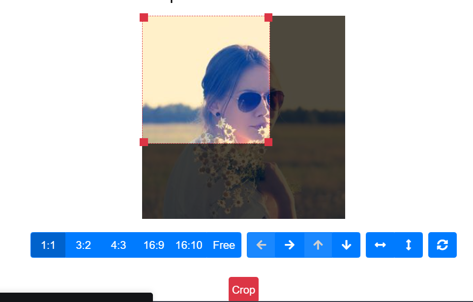 Build React.js Image Resizer and Cropper in Browser Using Javascript Full Project For Beginners